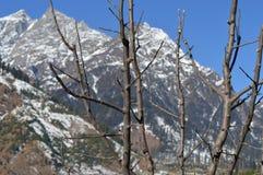 paysage de colline Photo stock
