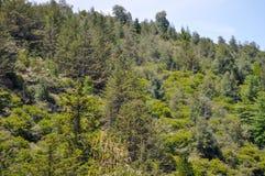 Paysage de collines en Général Belgrano, Cordoue de villa photo stock