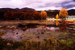 Paysage de comté de Daocheng Image stock