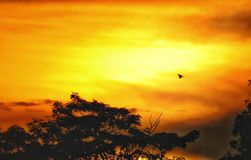 Paysage de coucher du soleil Photos libres de droits