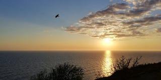 Paysage de coucher du soleil de soir?e de mer Nuages blancs peu communs atteignant la cale Est en avant la silhouette d'un oiseau images stock
