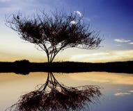 Paysage de crépuscule Image libre de droits