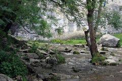 Paysage de crique de Malham en vallées de Yorkshire Image libre de droits