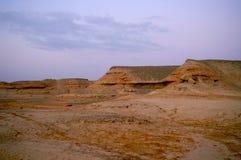 Paysage de désert photos libres de droits