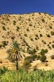 Paysage de désert en montagnes d'Antiatlas Photo libre de droits