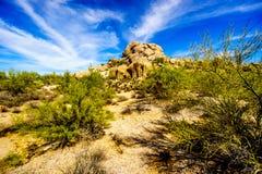 Paysage de désert et grandes formations de roche avec Cholla et cactus de Saguaro Photos stock