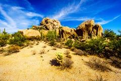 Paysage de désert et grandes formations de roche avec Cholla et cactus de Saguaro Photographie stock libre de droits