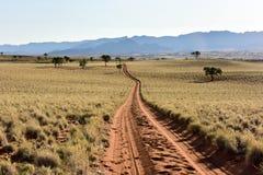 Paysage de désert - NamibRand, Namibie Images libres de droits