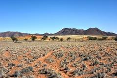 Paysage de désert - NamibRand, Namibie Photo libre de droits