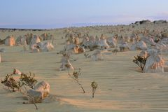 Paysage de désert de sommets au coucher du soleil Parc national de Nambung cervantes Australie occidentale l'australie images stock