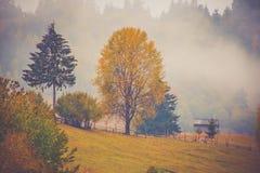 Paysage de paysage d'automne avec la forêt colorée, les barrières en bois et les granges de foin dans Bucovina, Roumanie photos stock