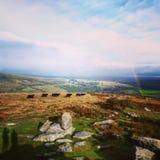 Paysage de Dartmoor Photos stock