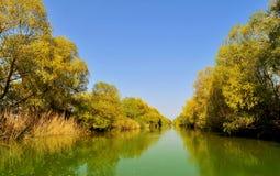 Paysage de delta de Danube Images stock