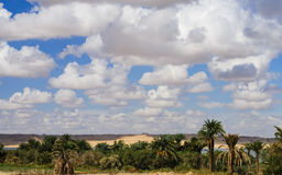 Paysage de Fayoum Image stock