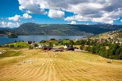 Paysage de fjord Image stock