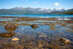 Paysage de fjord Photographie stock