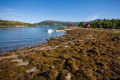 Paysage de fjord Photographie stock libre de droits