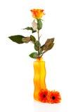 Paysage de fleur Photo libre de droits