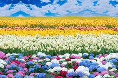 Paysage de fleur Images libres de droits