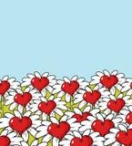 Paysage de fleur d'amour Pré de camomille Ciel bleu et coeur rouge Images stock