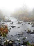 Paysage de fleuve d'automne Photo libre de droits