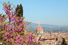 Paysage de Florence Photos libres de droits