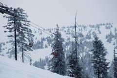 Paysage de forêt d'hiver Montagne dans la fumée carpathienne, Ukraine, l'Europe Photo libre de droits