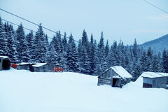 Paysage de forêt d'hiver Montagne dans la fumée carpathienne, Ukraine, l'Europe Photos stock