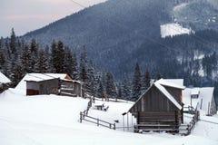 Paysage de forêt d'hiver Montagne dans la fumée carpathienne, Ukraine, l'Europe Photographie stock libre de droits
