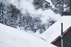 Paysage de forêt d'hiver Montagne dans la fumée carpathienne, Ukraine, l'Europe Images stock