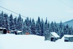 Paysage de forêt d'hiver Montagne dans la fumée carpathienne, Ukraine, l'Europe Images libres de droits