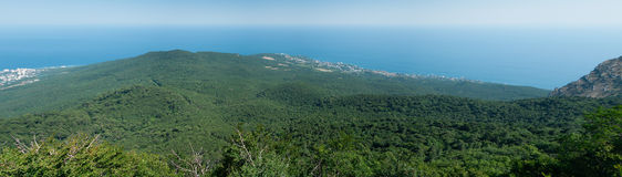 Paysage de forêt de montagne de mer de panorama Images libres de droits