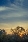 Paysage de forêt de montagne sous le ciel de soirée avec des nuages au soleil Photo libre de droits