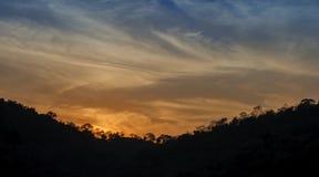 Paysage de forêt de montagne sous le ciel de soirée avec des nuages dans le sunli Images libres de droits