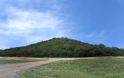 Paysage de forêt de montagne sur le fond de ciel bleu dans l'amende Photo stock