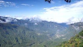 Paysage de forêt de Hubei Shennongjia banque de vidéos