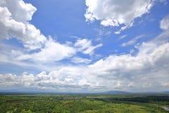 Paysage de forêt sous le ciel bleu nuageux Photographie stock