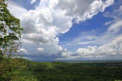 Paysage de forêt sous le ciel bleu nuageux Image stock