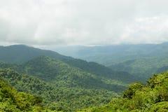 Paysage de forêt tropicale en Monteverde Costa Rica images libres de droits