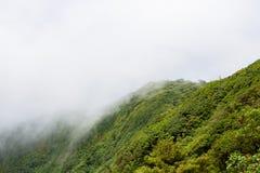 Paysage de forêt tropicale en Monteverde Costa Rica Image libre de droits