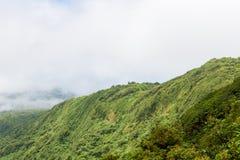 Paysage de forêt tropicale en Monteverde Costa Rica Photos stock
