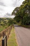 Paysage de forêts et de montagne d'été dans la vallée d'élan du Pays de Galles Images stock