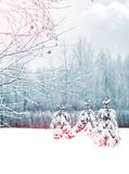 Paysage de Forest Winter d'hiver Photo libre de droits