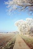 Paysage de gel de givre au champ dans Havelland Brandebourg - Allemand Photographie stock