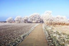 Paysage de gel de givre au champ de Havelland Brandebourg - Allemagne Images libres de droits