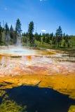 Paysage de geyser Image stock