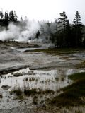 Paysage de geyser Photos stock