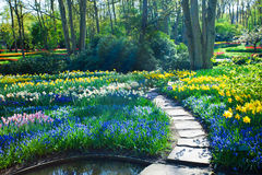 Paysage de jardin de ressort Photo libre de droits