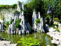 Paysage de jardin de rocaille photo libre de droits