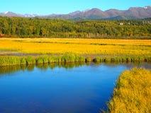 Paysage de l'Alaska Photo libre de droits